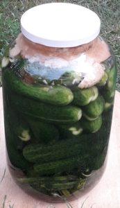 Házi kovászos uborka recept – tartósítószer nélkül (tisztán), természetesen