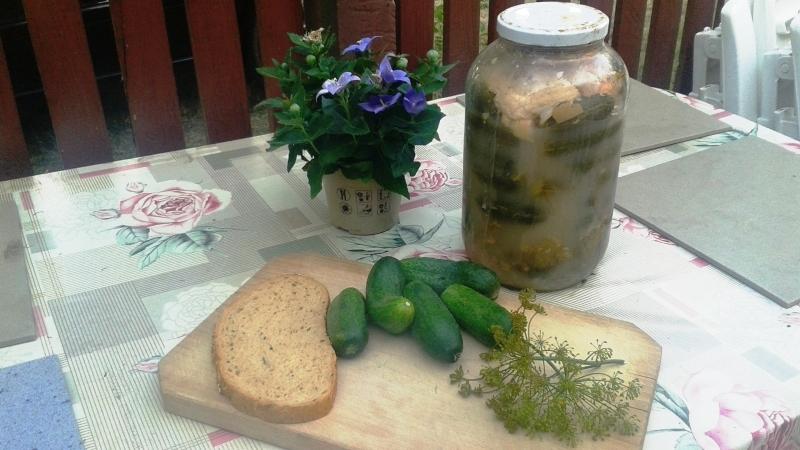 házi makrobiotikus kovászos uborka